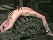 Online tortured girl