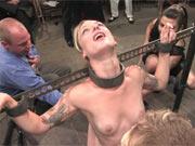BDSM in Public Disgrace