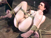 Carmen tortured for Hogtied